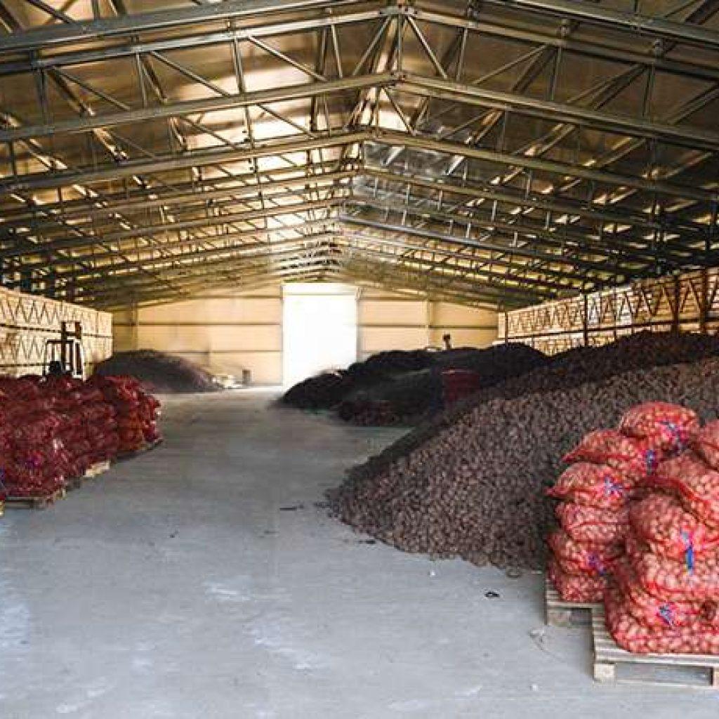 Genial Potato Storage