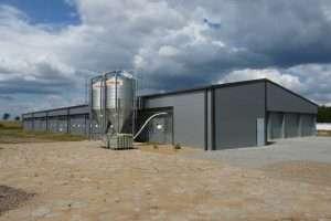 chicken farms breeding steel industrial halls PEB