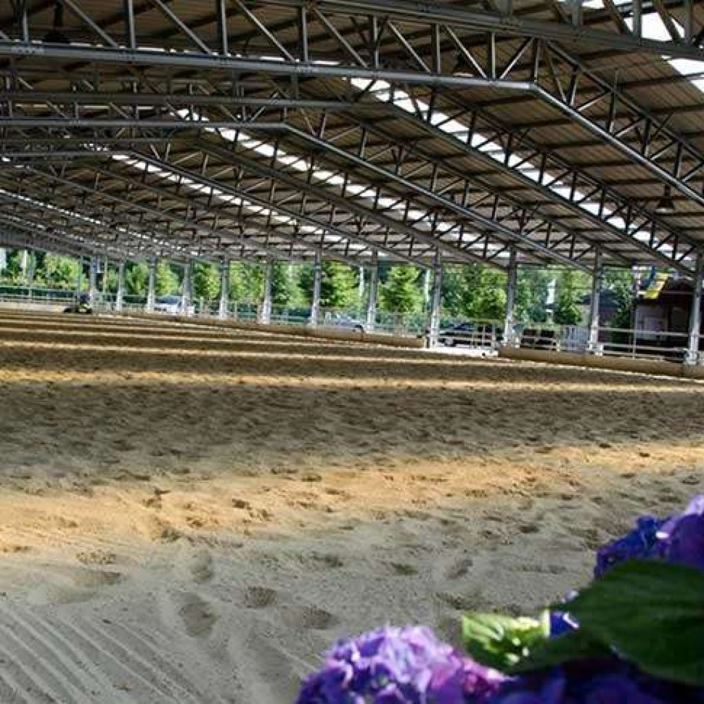 Case Study Horse Arena Sports Amp Leisure Buildings