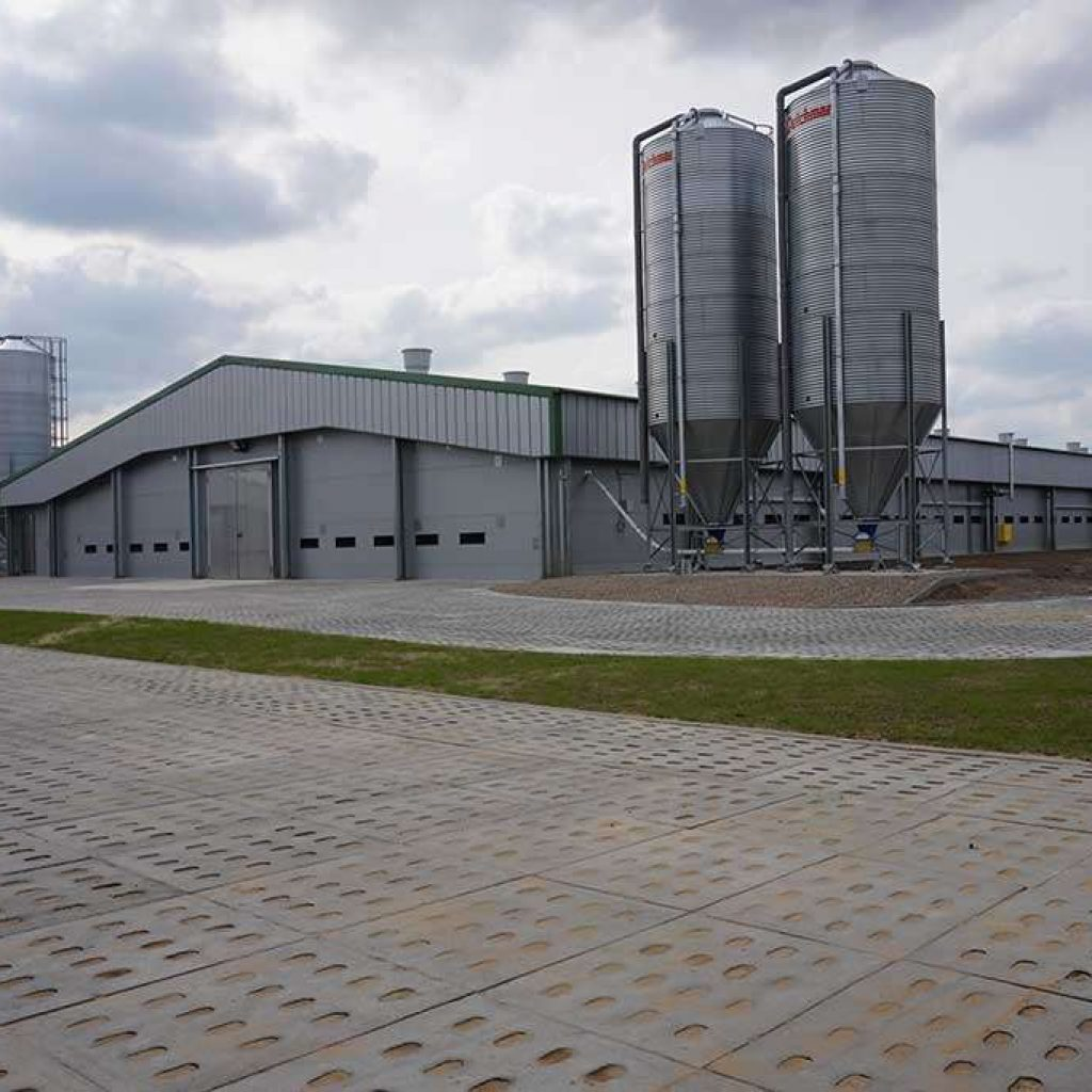 livestock farms steel industrial buildings prefab