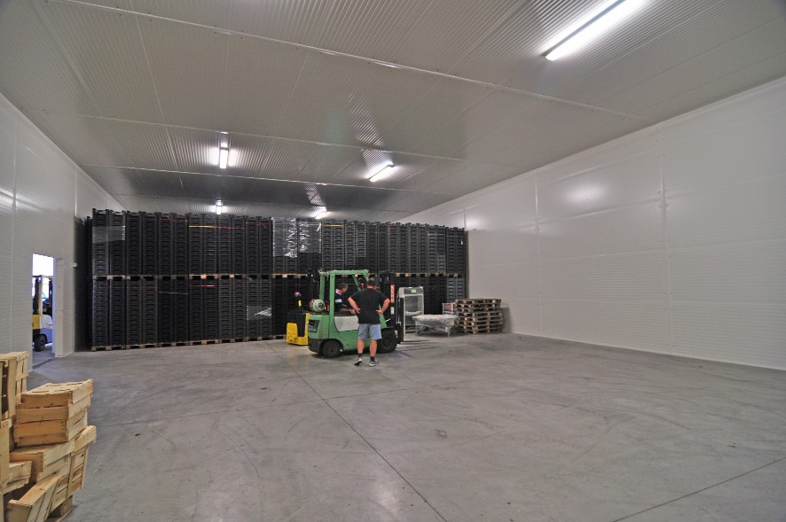 vegetable storage warehouse