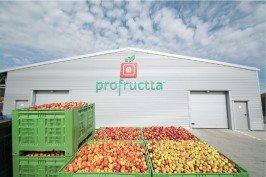 vegetable storage building