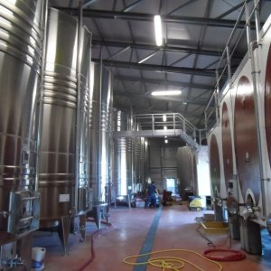 agricultural wineries